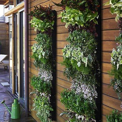 1-9-vertical-garden-2_rect540[1]
