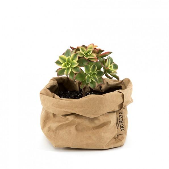 paper-bag-small avana
